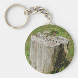 Stump Keychain