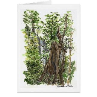 Stump & Waterfall Card