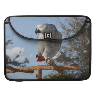 Stunning African Grey Parrot Sleeves For MacBooks