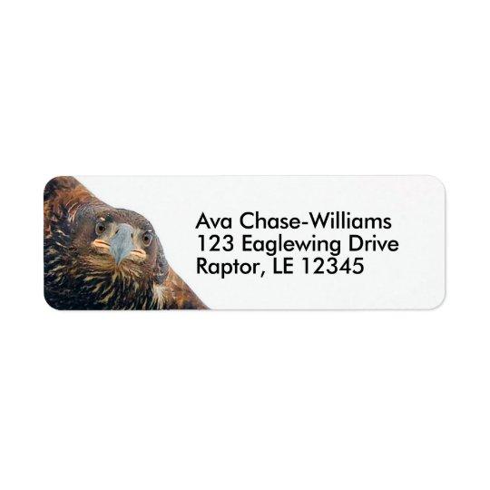 Stunning Bald Eagle Does a Flyover Return Address Label