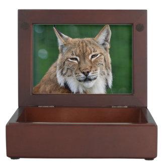 Stunning bobcat portrait keepsake box