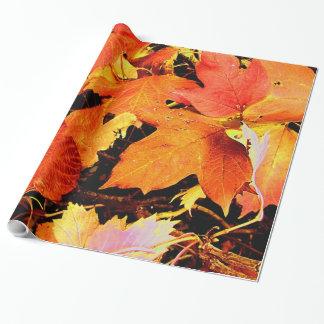 Stunning Bold Orange Autumn Leaves