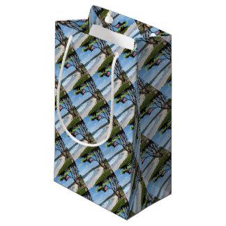 Stunning! CARMEL CALIFORNIA USA Small Gift Bag