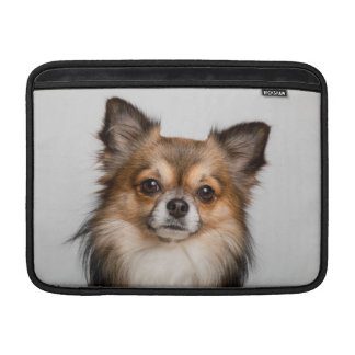 Stunning chihuahua portrait sleeve for MacBook air