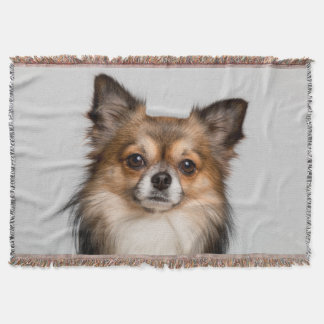 Stunning chihuahua portrait throw blanket