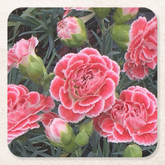 Stunning Dianthus Square Paper Coaster