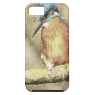 Stunning Kingfisher In Watercolor iPhone 5 Covers