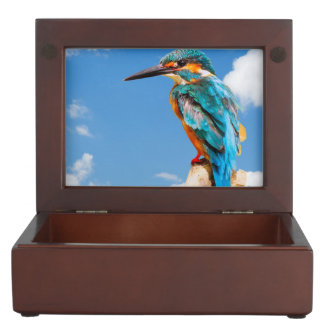 Stunning kingfisher keepsake box