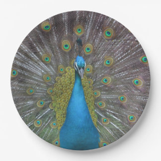 Stunning Peacock 9 Inch Paper Plate