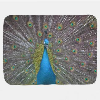 Stunning Peacock Baby Blankets
