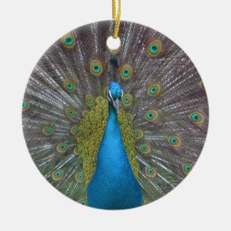 Stunning Peacock Ceramic Ornament