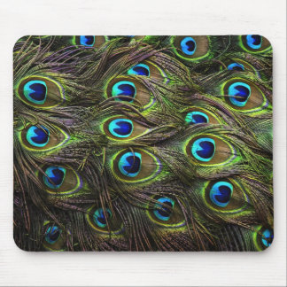 Stunning Peacock Feathered Mouse Pad