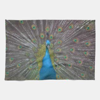 Stunning Peacock Kitchen Towel