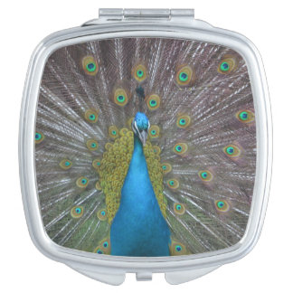 Stunning Peacock Mirror For Makeup