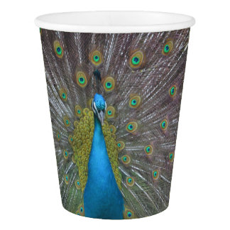 Stunning Peacock Paper Cup