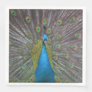 Stunning Peacock Paper Napkins