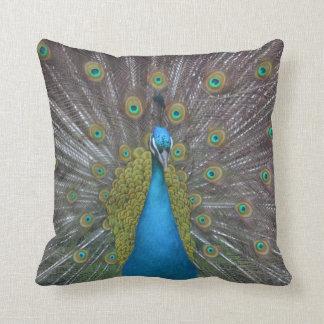 Stunning Peacock Throw Pillow