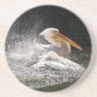 Stunning pelican in water coaster