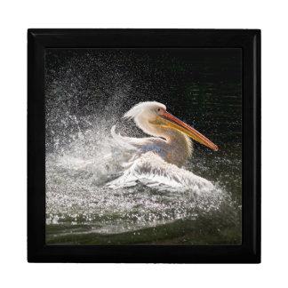 Stunning pelican in water gift box