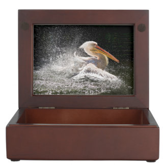 Stunning pelican in water keepsake box