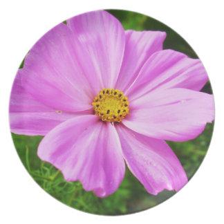 Stunning Pink Flower Plate