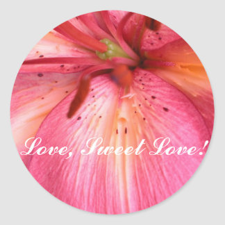 Stunning Pink Flower Round Sticker