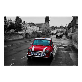 Stunning Red Mini Poster