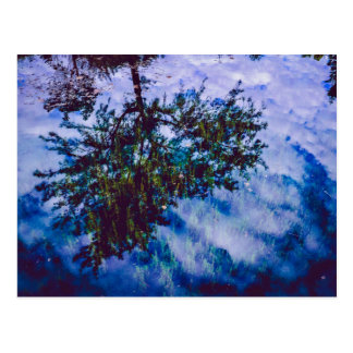 Stunning reflection of sky and trees postcard