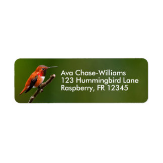 Stunning Rufous Hummingbird on the Cherry Tree Return Address Label
