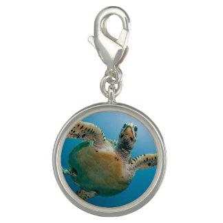 Stunning sea tortoise charm