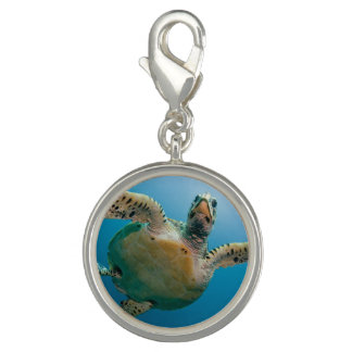 Stunning sea tortoise charms