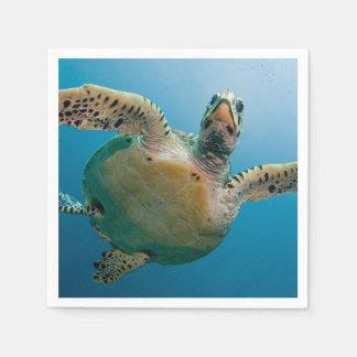 Stunning sea tortoise paper napkin