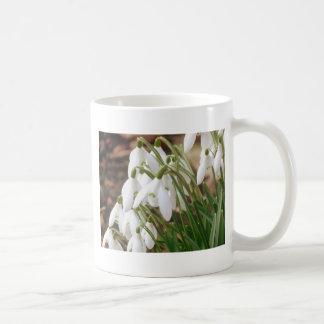 Stunning Snowdrops Coffee Mug