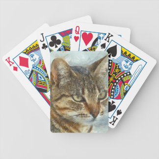 Stunning Tabby Cat Close Up Portrait Bicycle Playing Cards
