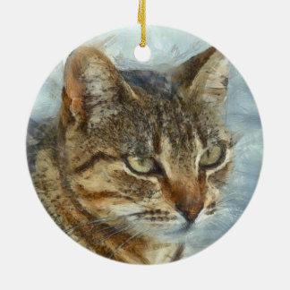 Stunning Tabby Cat Close Up Portrait Ceramic Ornament
