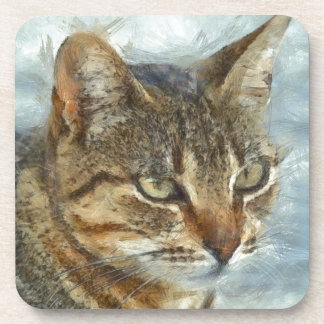 Stunning Tabby Cat Close Up Portrait Coaster