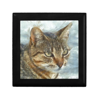 Stunning Tabby Cat Close Up Portrait Gift Box