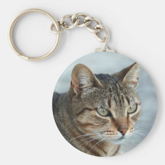Stunning Tabby Cat Close Up Portrait Keychain