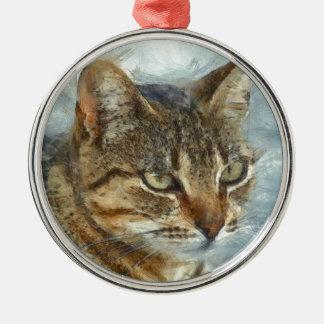 Stunning Tabby Cat Close Up Portrait Metal Ornament