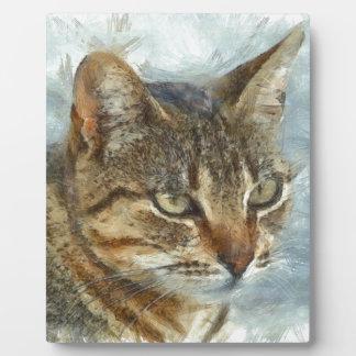 Stunning Tabby Cat Close Up Portrait Plaque