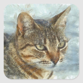 Stunning Tabby Cat Close Up Portrait Square Sticker