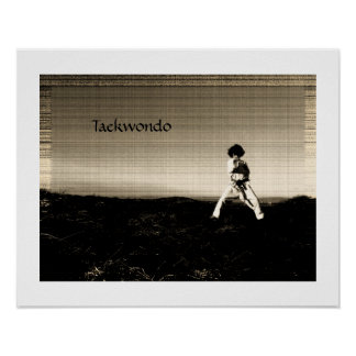 Stunning taekwondo poster