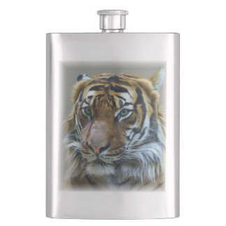 Stunning tiger portrait hip flask