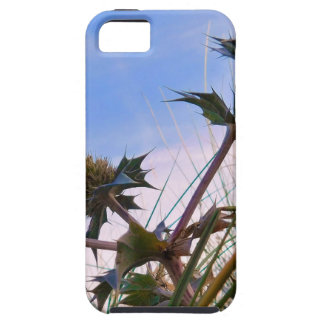 Stunning Unique Eye Catching Thistle iPhone 5 Cases