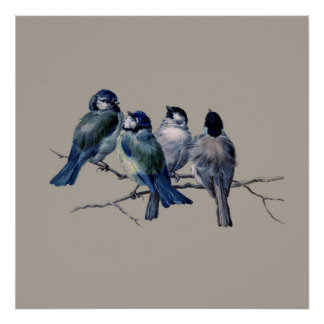 Stunning Vintage Art Blue Birds on branch x 4 Gift Poster