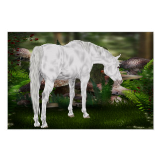 Stunning White Horse Fantasy Scene Poster