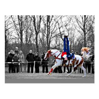 Stunt Riding Postcard
