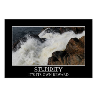 Stupidity is its own reward (S) Poster