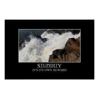 Stupidity is its own reward [XL] Posters