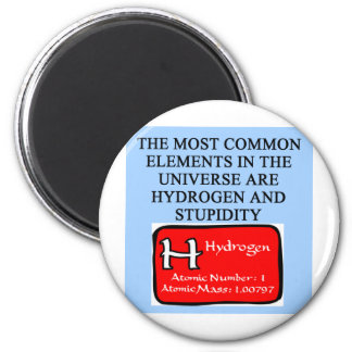 STUPIDITY MAGNET